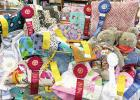 Area Sewing Students Awarded Ribbons at State Fair of Texas