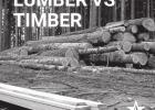 How the Surge in Lumber Prices is Affecting Landowners