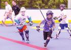Dek Hockey Arrives in Forney