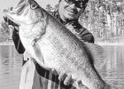 Toyota ShareLunker Program Chalks Up Two More Legacy Lunkers